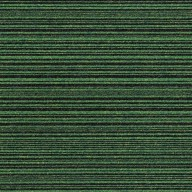 21905-apple-green-stripe