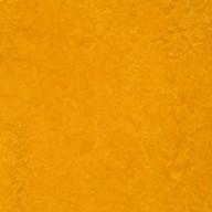 3125 Golden Sunset