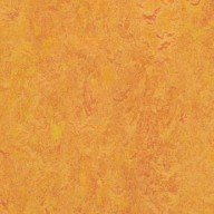 3226 Marigold